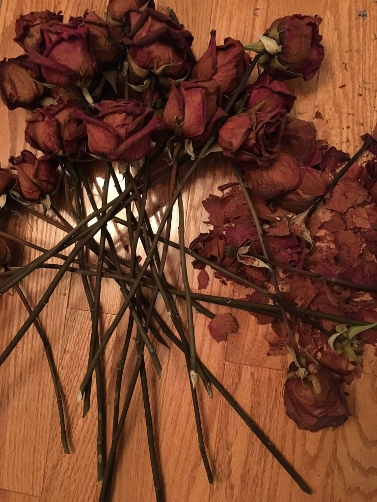 dry broken roses