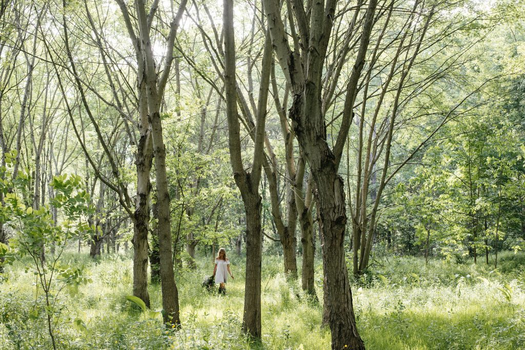 Carrie walking in a wooded meadow, surrounded by green leaves