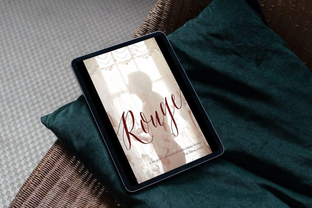 Rouge on tablet screen on teal velvet pillow